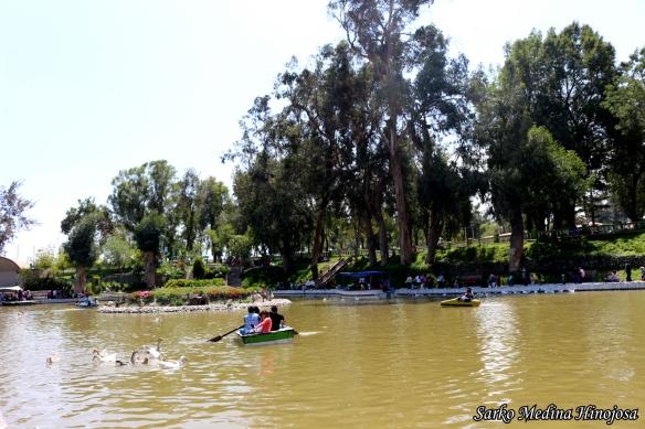 Parque Selva Alegre 3